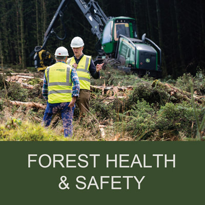 Forest Health & Safety - Euroforest Ireland